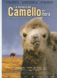 Historia del camello que llora